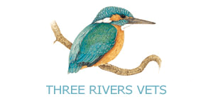 Vet Norwich Norfolk Beccles Suffolk | Three Rivers Vet Group